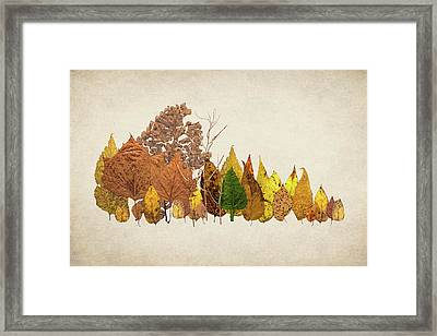 Forest Of Autumn Leaves I Framed Print by Tom Mc Nemar