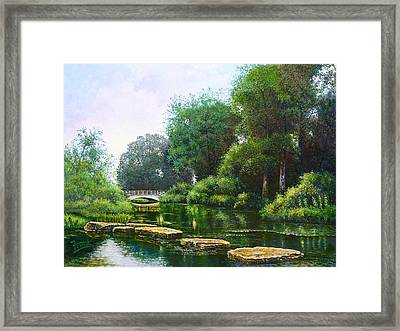 Forest Park Stepping Stones Framed Print by Michael Frank