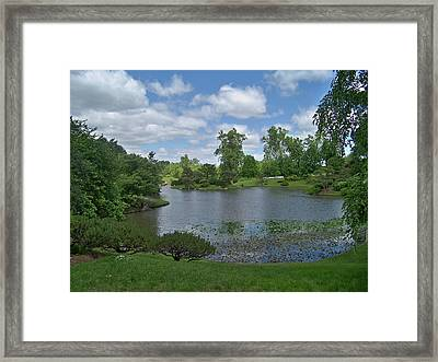 Forest Park View Framed Print by Julie Grace