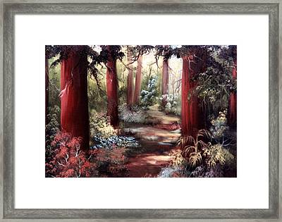Forest Path Framed Print by Joni McPherson