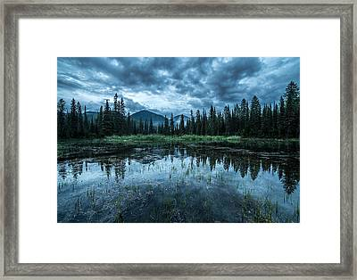 Forest Reflection // Whitefish, Montana  Framed Print by Nicholas Parker