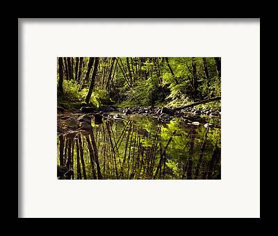 Wilson River Framed Prints