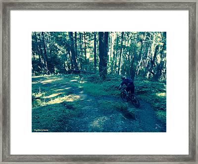 Forest Ride Framed Print