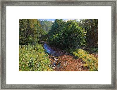 Forest River Summer Day Framed Print