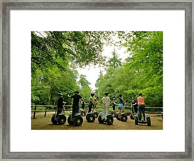 Forest Segway Framed Print