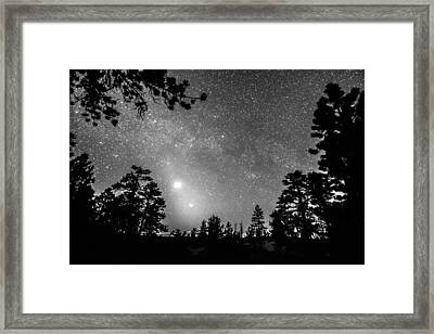 Forest Silhouettes Constellation Astronomy Gazing Framed Print by James BO  Insogna