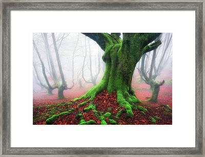 Forest Speeches Framed Print