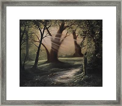 Forest Stream  Framed Print