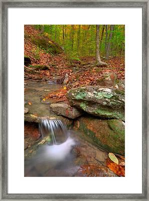 Forest Stream Framed Print by Ryan Heffron