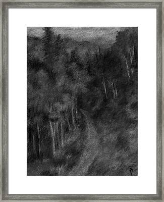 Forest Study II Framed Print by David King