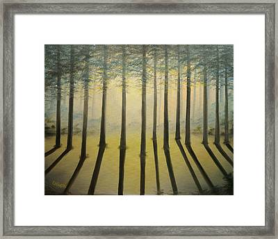 Forest Thru The Trees II Framed Print