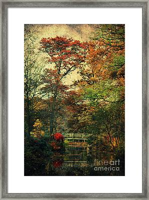 Forest Vintage Framed Print by Angela Doelling AD DESIGN Photo and PhotoArt