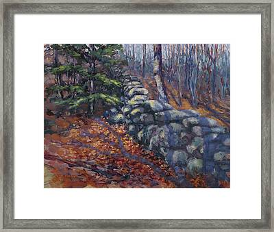 Forest Wall Framed Print
