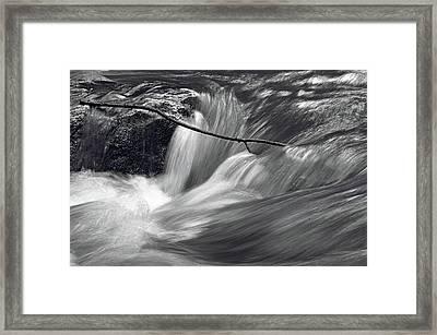 Forest Water Stream Framed Print