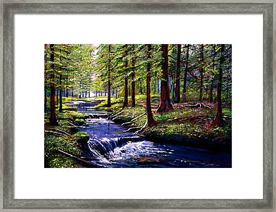 Forest Waters Framed Print by David Lloyd Glover