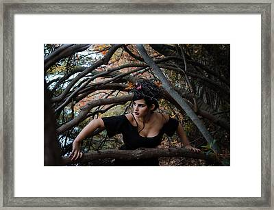 Forest Witch Framed Print by Stefanie Silva