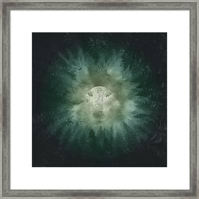 Forest Wolf 2 Framed Print