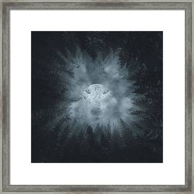 Forest Wolf Framed Print