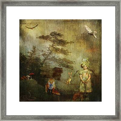 Forest Wonderland Framed Print by Diana Boyd