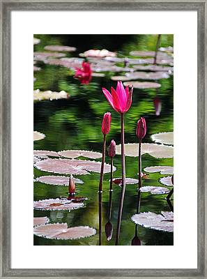 Forever And A Day Framed Print