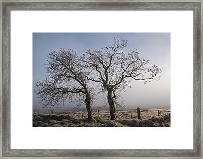 Framed Print featuring the photograph Forever Buddies Facing The Fog by Jeremy Lavender Photography