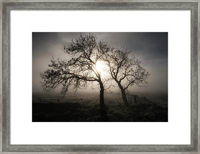 Framed Print featuring the photograph Forever Buddies by Jeremy Lavender Photography