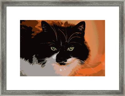 Forever Home Framed Print by Dianne Cowen