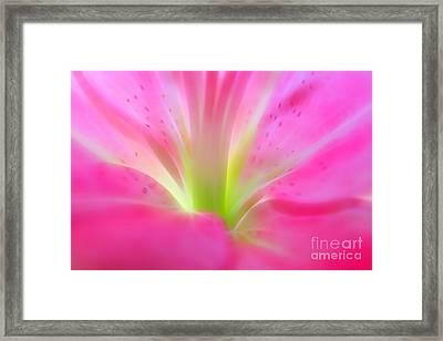 Forever In Pink Framed Print by Krissy Katsimbras