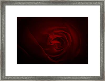Framed Print featuring the photograph Forever Love by Annette Hugen