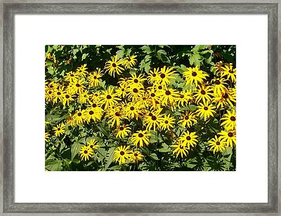 Framed Print featuring the digital art Forever Susan by Barbara S Nickerson