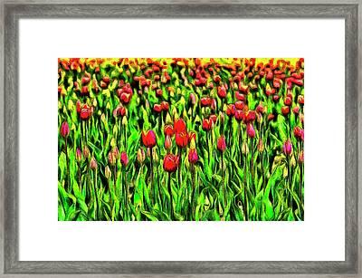 Forever Tulips Framed Print