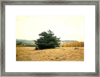 Framed Print featuring the photograph Forever Views by Fred Wilson