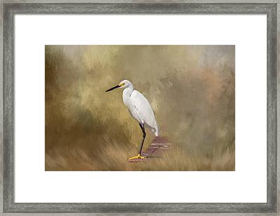 Framed Print featuring the photograph Forever Watching by Kim Hojnacki