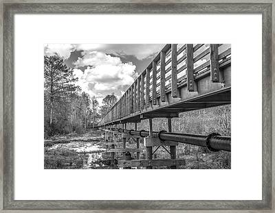 Forever Wild Trail Black And White Framed Print by Jeremy Raines