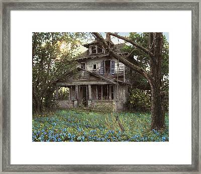Forget-me-not Framed Print by Doug Kreuger