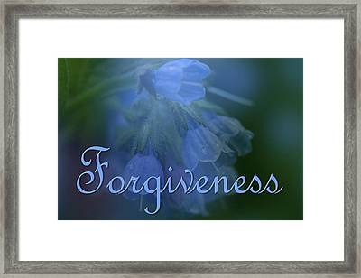 Forgiveness Blue Bells Framed Print