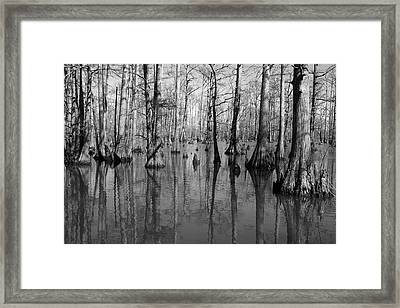 Forgotten - Black And White Art Print Framed Print by Jane Eleanor Nicholas