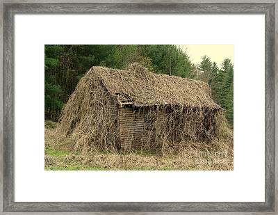 Forgotten Cabin Framed Print
