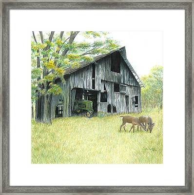 Forgotten Framed Print by Carla Kurt