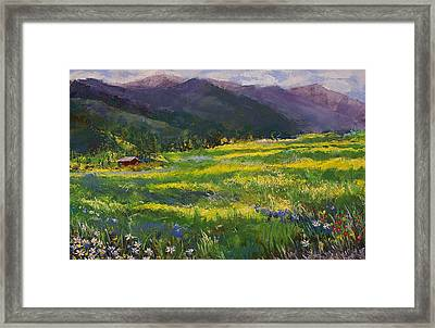 Forgotten Field Framed Print by David Patterson