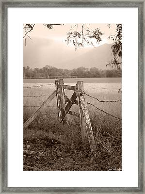 Forgotten Fields 2 Framed Print