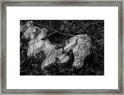 Framed Print featuring the photograph Forgotten Innocence by Andrew Pacheco