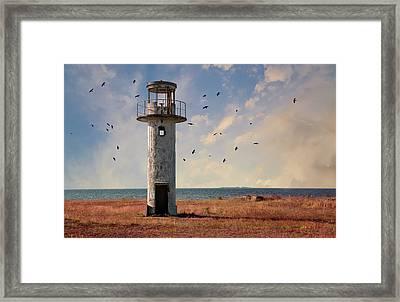 Forgotten Lighthouse In Estonia Framed Print