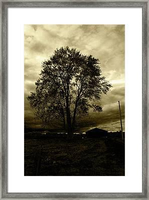 Forgotten Memory Framed Print