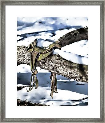 Forgotten Saddle Framed Print by Nicki McManus