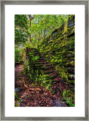 Forgotten Steps Framed Print by Adrian Evans