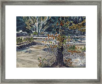 Fork In The White River Framed Print by Donald Maier