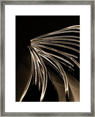 Forks Framed Print by Claire Hull