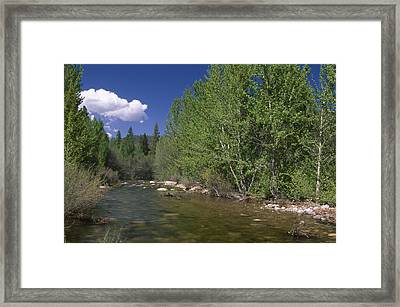 Forks Of Kern Framed Print by Soli Deo Gloria Wilderness And Wildlife Photography