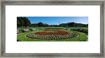 Formal Garden At The University Campus Framed Print by Panoramic Images